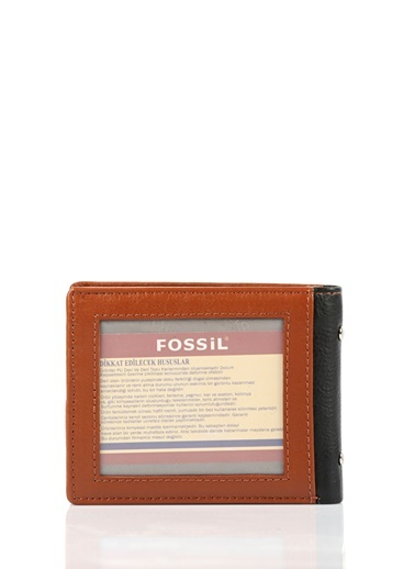 Cüzdan-Fossil